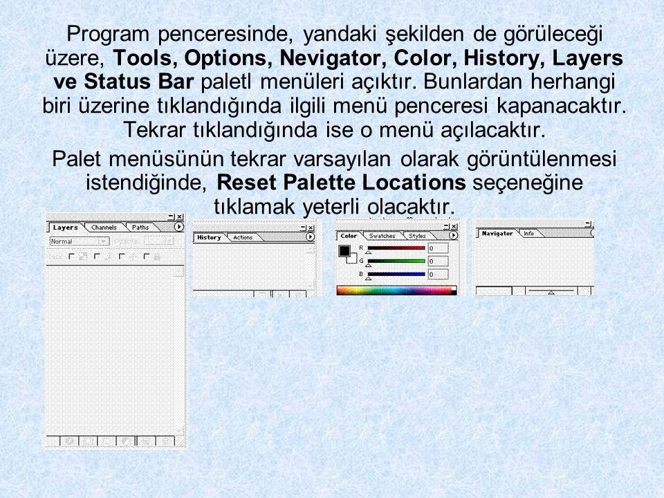 Program penceresinde, yandaki şekilden de görüleceği üzere, Tools, Options, Nevigator, Color, History, Layers ve Status Bar paletl menüleri açıktır.
