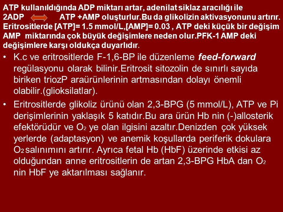 ATP kullanıldığında ADP miktarı artar, adenilat siklaz aracılığı ile 2ADPATP +AMP oluşturlur.Bu da glikolizin aktivasyonunu artırır. Eritrositlerde [A