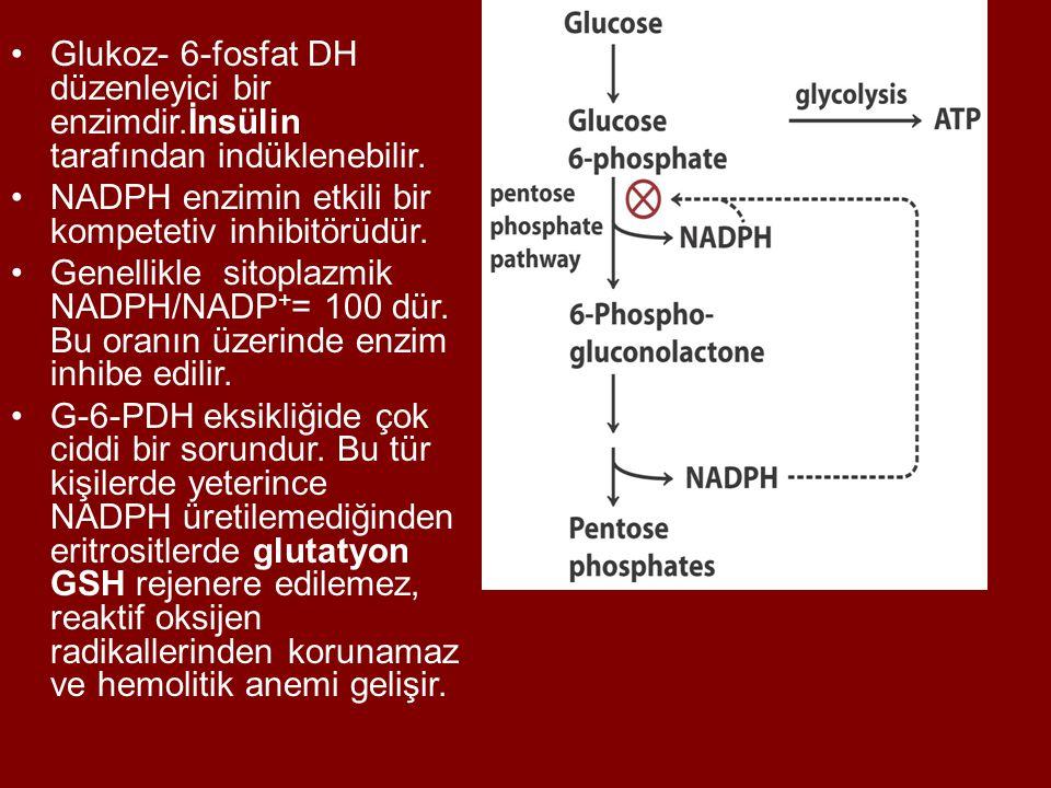 Glukoz- 6-fosfat DH düzenleyici bir enzimdir.İnsülin tarafından indüklenebilir. NADPH enzimin etkili bir kompetetiv inhibitörüdür. Genellikle sitoplaz