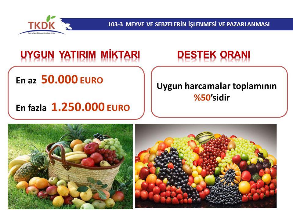 103-3 MEYVE VE SEBZELERİN İŞLENMESİ VE PAZARLANMASI En az 50.000 EURO En fazla 1.250.000 EURO Uygun harcamalar toplamının %50'sidir