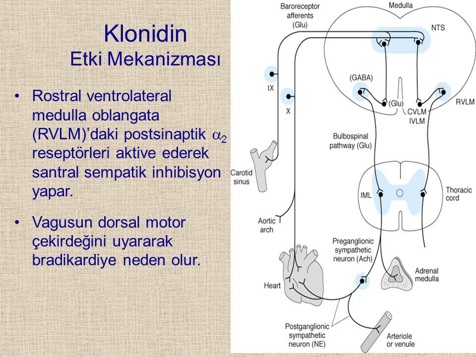 Klonidin Etki Mekanizması Rostral ventrolateral medulla oblangata (RVLM)'daki postsinaptik  2 reseptörleri aktive ederek santral sempatik inhibisyon