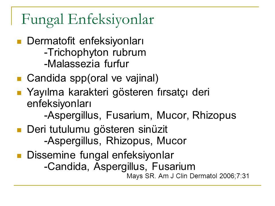 Fungal Enfeksiyonlar Dermatofit enfeksiyonları -Trichophyton rubrum -Malassezia furfur Candida spp(oral ve vajinal) Yayılma karakteri gösteren fırsatçı deri enfeksiyonları -Aspergillus, Fusarium, Mucor, Rhizopus Deri tutulumu gösteren sinüzit -Aspergillus, Rhizopus, Mucor Dissemine fungal enfeksiyonlar -Candida, Aspergillus, Fusarium Mays SR.