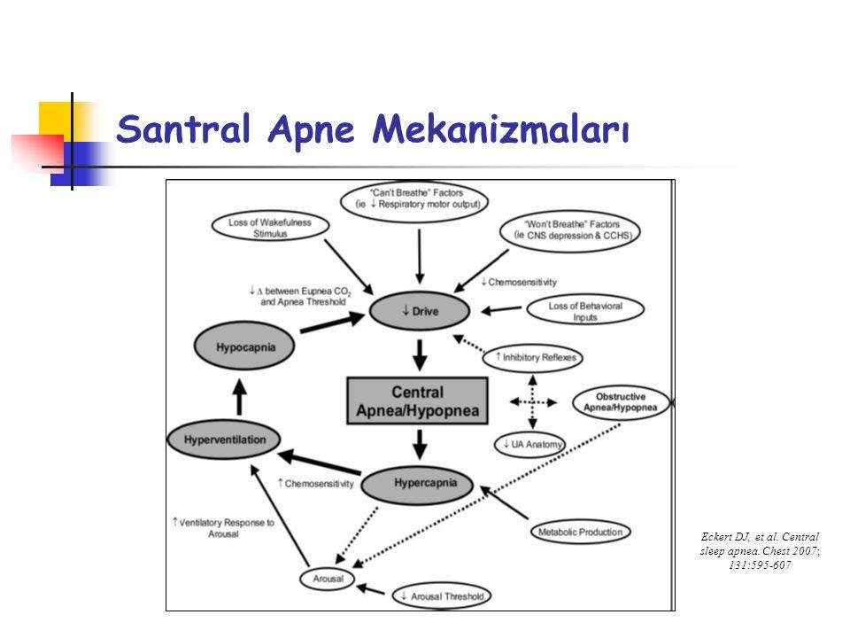 Santral Apne Mekanizmaları Eckert DJ, et al. Central sleep apnea. Chest 2007; 131:595-607