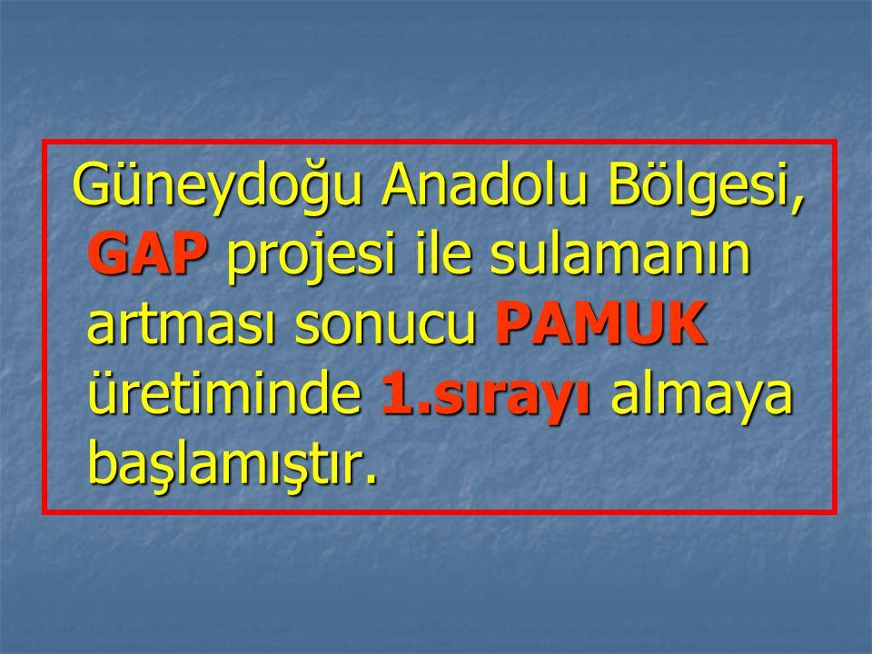Güneydoğu Anadolu Bölgesi, GAP projesi ile sulamanın artması sonucu PAMUK üretiminde 1.sırayı almaya başlamıştır. Güneydoğu Anadolu Bölgesi, GAP proje