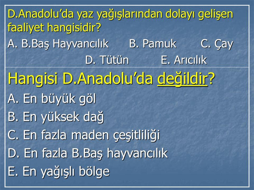 D.Anadolu'da yaz yağışlarından dolayı gelişen faaliyet hangisidir? A. B.Baş Hayvancılık B. Pamuk C. Çay D. Tütün E. Arıcılık D. Tütün E. Arıcılık Hang