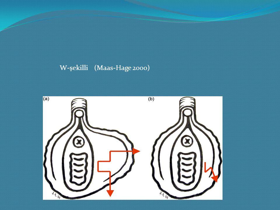 W-şekilli (Maas-Hage 2000)