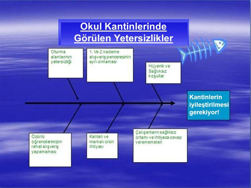 3.Fiziki Koşullar 3.1. Zemin, tavan ve duvarların temiz ve bakımlı olması, 3.2.