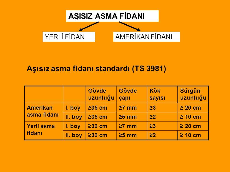 Gövde uzunluğu Gövde çapı Kök sayısı Sürgün uzunluğu Amerikan asma fidanı I. boy≥35 cm≥7 mm≥3≥3≥ 20 cm II. boy≥35 cm≥5 mm≥2≥2≥ 10 cm Yerli asma fidanı
