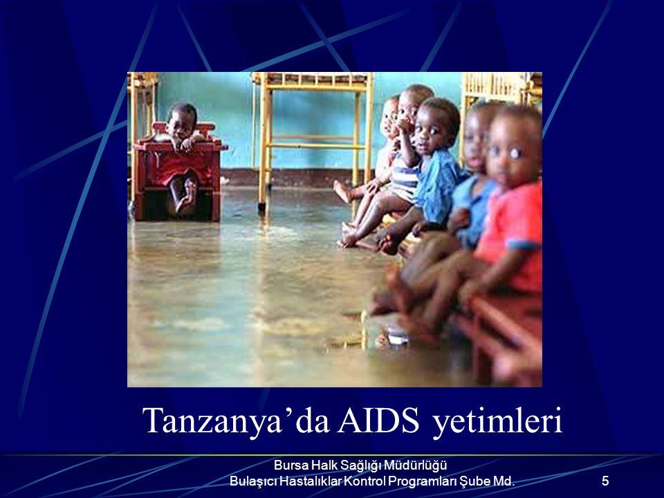 Bursa Halk Sağlığı Müdürlüğü Bulaşıcı Hastalıklar Kontrol Programları Şube Md.15 AIDS Nasıl Bulaşır.