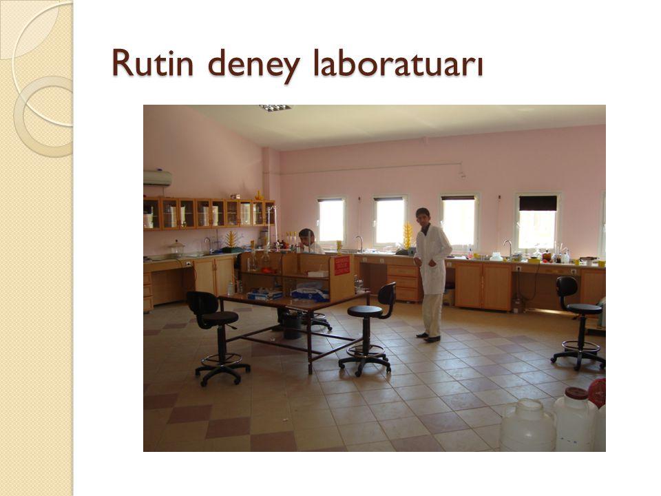 Rutin deney laboratuarı
