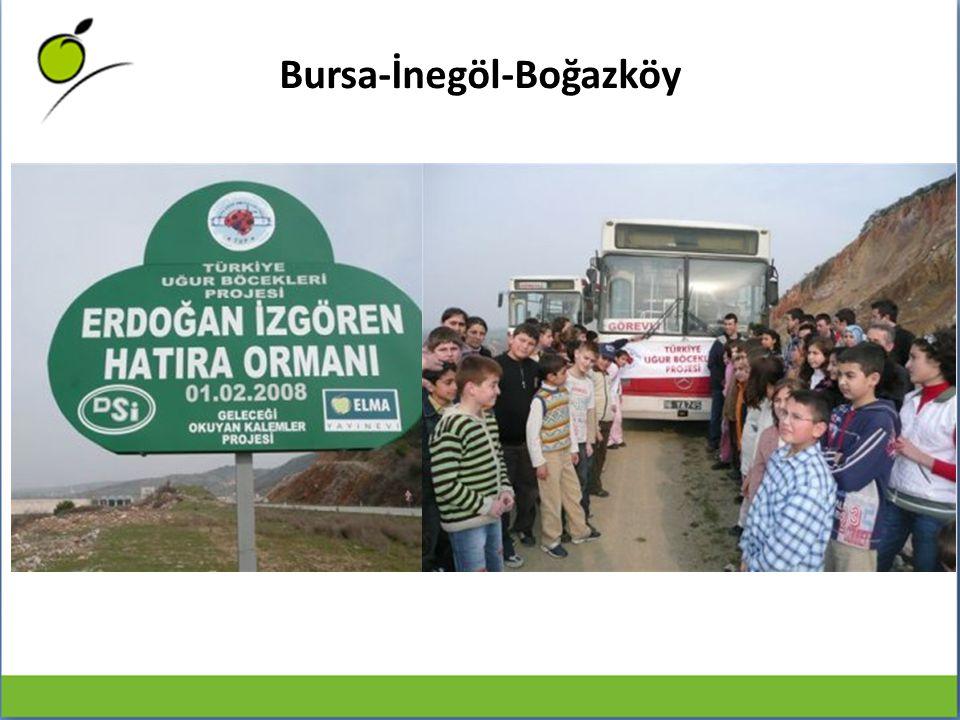 Bursa-İnegöl-Boğazköy