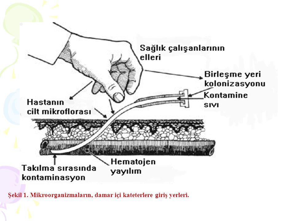 Şekil 1. Mikroorganizmaların, damar içi kateterlere giriş yerleri.