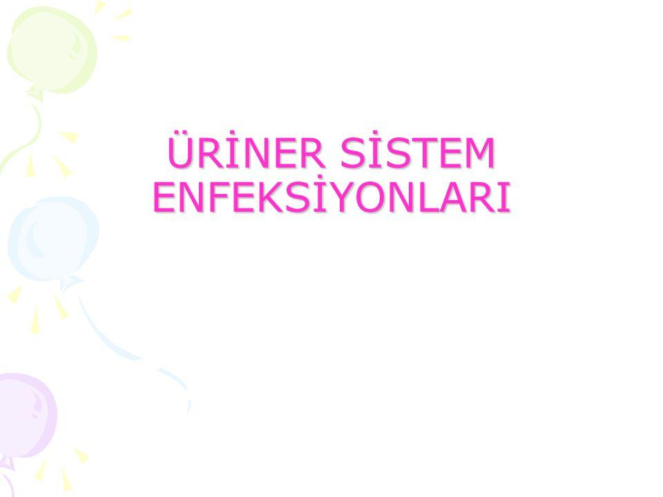 ÜRİNER SİSTEM ENFEKSİYONLARI