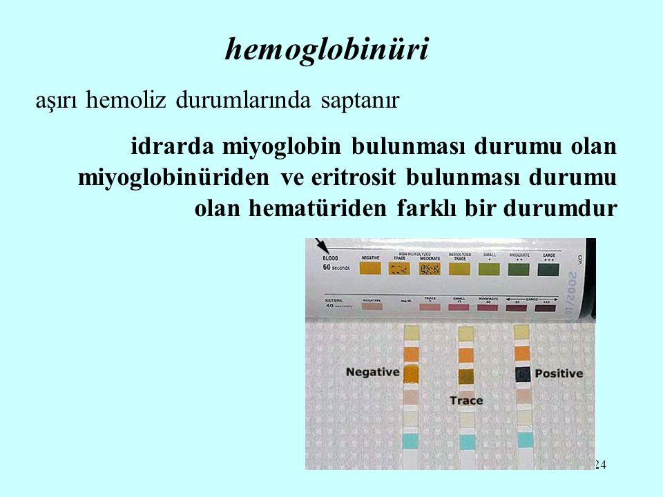 24 hemoglobinüri aşırı hemoliz durumlarında saptanır idrarda miyoglobin bulunması durumu olan miyoglobinüriden ve eritrosit bulunması durumu olan hematüriden farklı bir durumdur