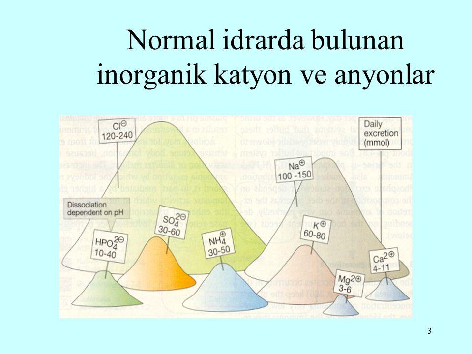 3 Normal idrarda bulunan inorganik katyon ve anyonlar