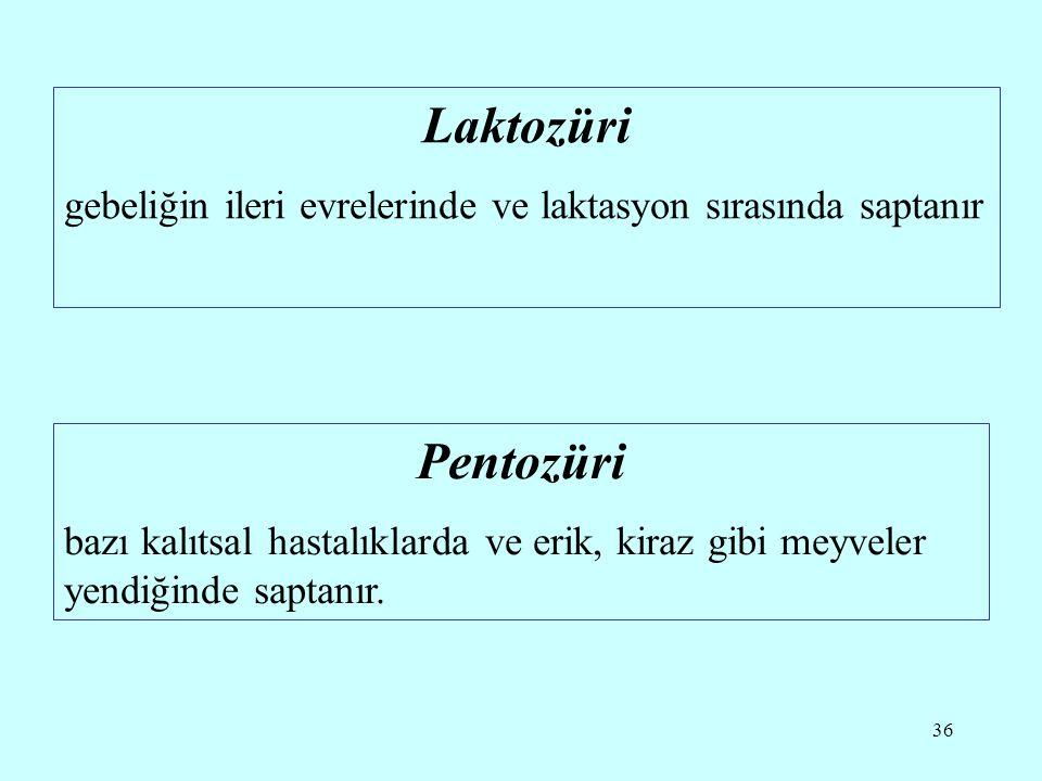 36 Laktozüri gebeliğin ileri evrelerinde ve laktasyon sırasında saptanır Pentozüri bazı kalıtsal hastalıklarda ve erik, kiraz gibi meyveler yendiğinde saptanır.