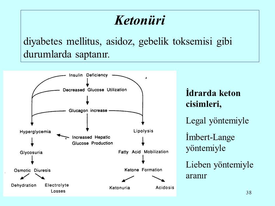 38 Ketonüri diyabetes mellitus, asidoz, gebelik toksemisi gibi durumlarda saptanır.
