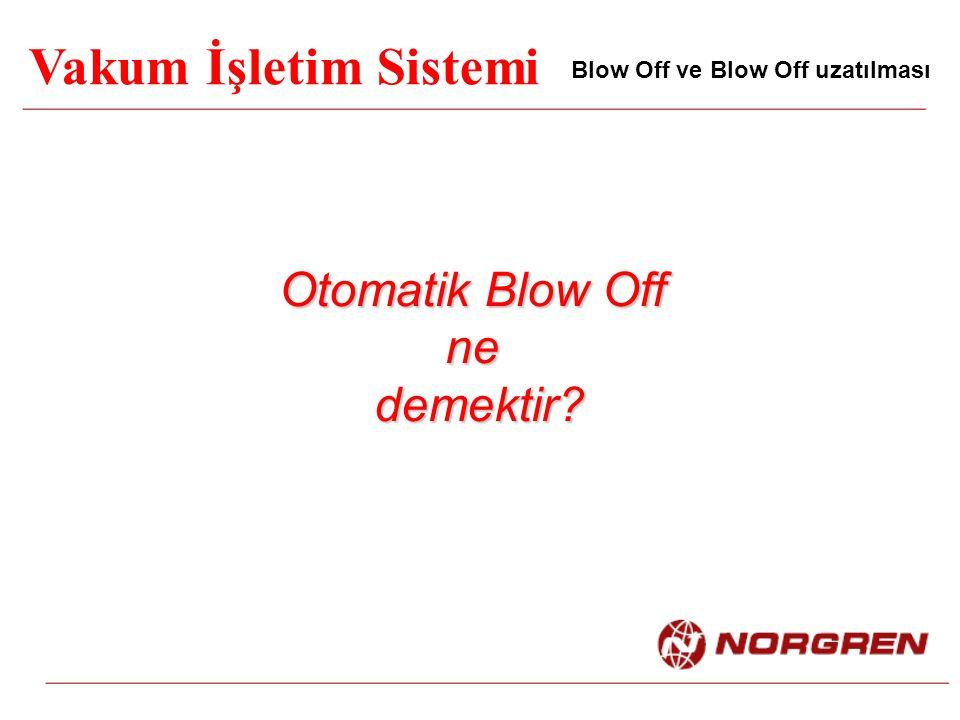Vakum İşletim Sistemi Blow Off ve Blow Off uzatılması Otomatik Blow Off ne demektir? demektir?