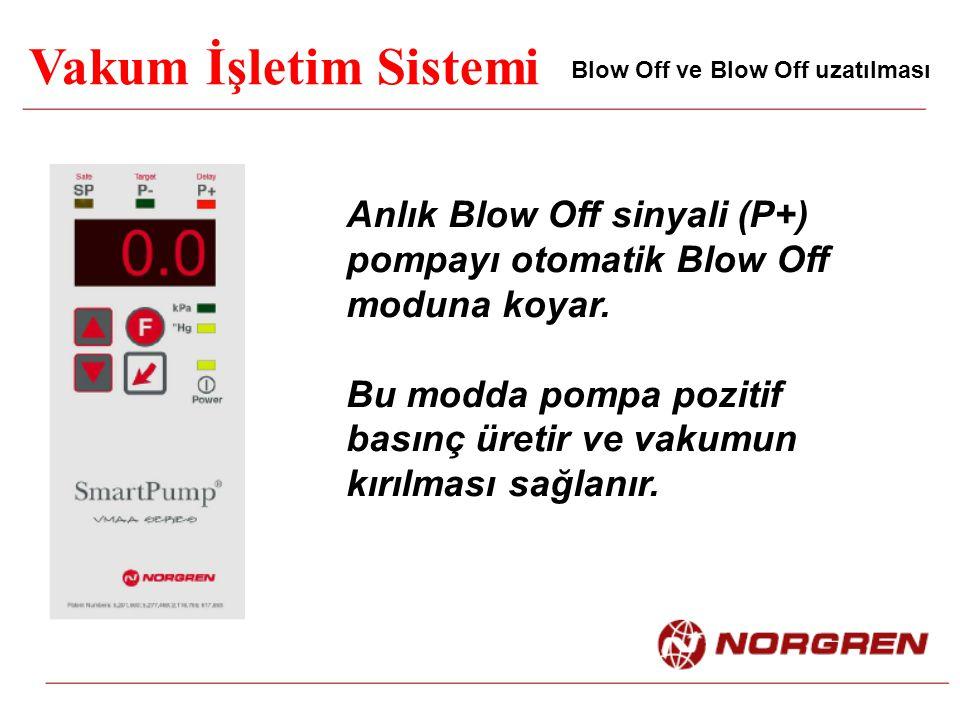 Vakum İşletim Sistemi Blow Off ve Blow Off uzatılması Anlık Blow Off sinyali (P+) pompayı otomatik Blow Off moduna koyar. Bu modda pompa pozitif basın