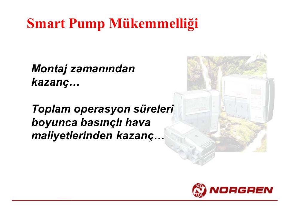 Smart Pump Mükemmelliği Montaj zamanından kazanç… Toplam operasyon süreleri boyunca basınçlı hava maliyetlerinden kazanç…