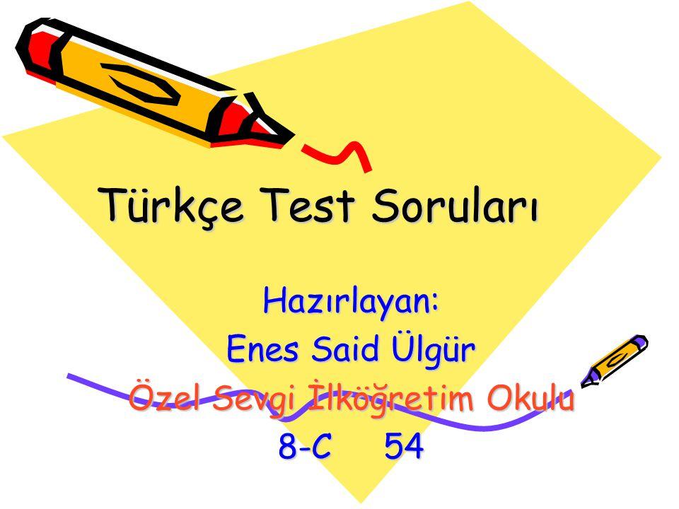 Türkçe Test Soruları Hazırlayan: Enes Said Ülgür Özel Sevgi İlköğretim Okulu 8-C 54