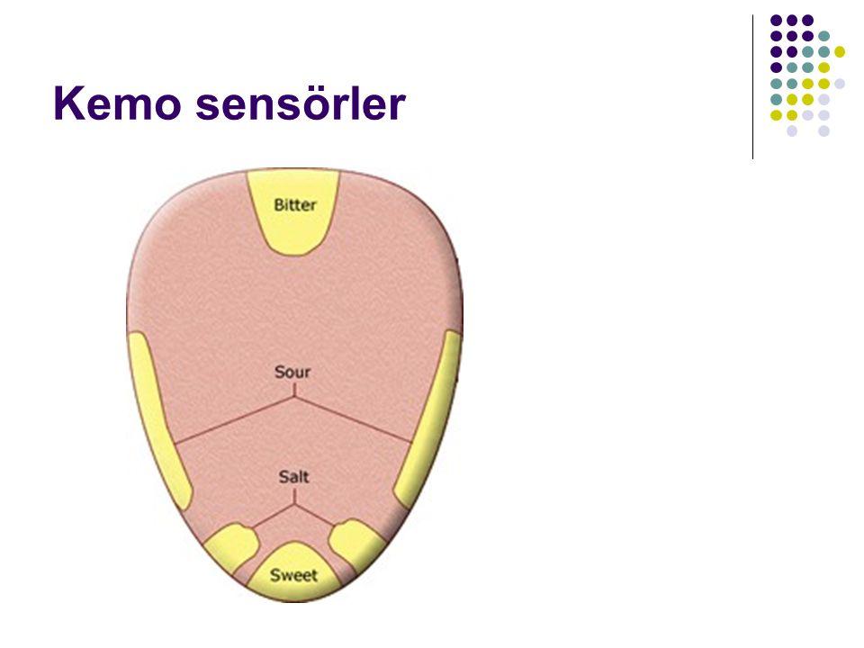 Kemo sensörler
