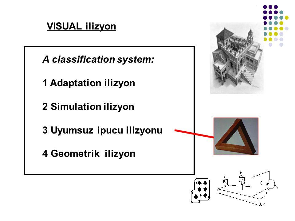 VISUAL ilizyon A classification system: 1 Adaptation ilizyon 2 Simulation ilizyon 3 Uyumsuz ipucu ilizyonu 4 Geometrik ilizyon
