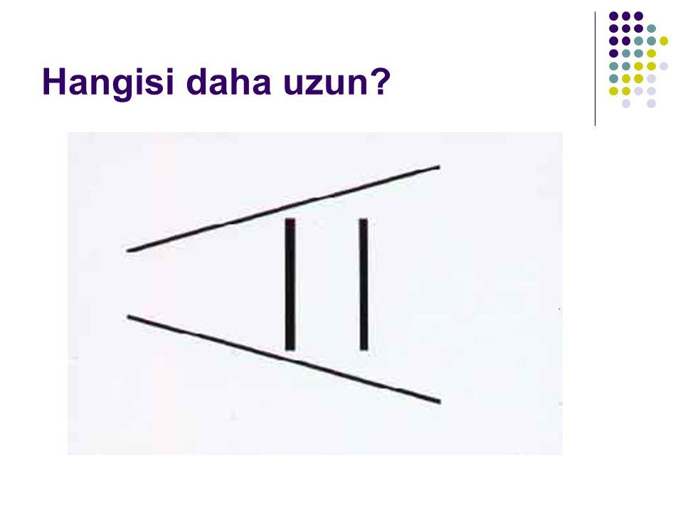 Hangisi daha uzun?