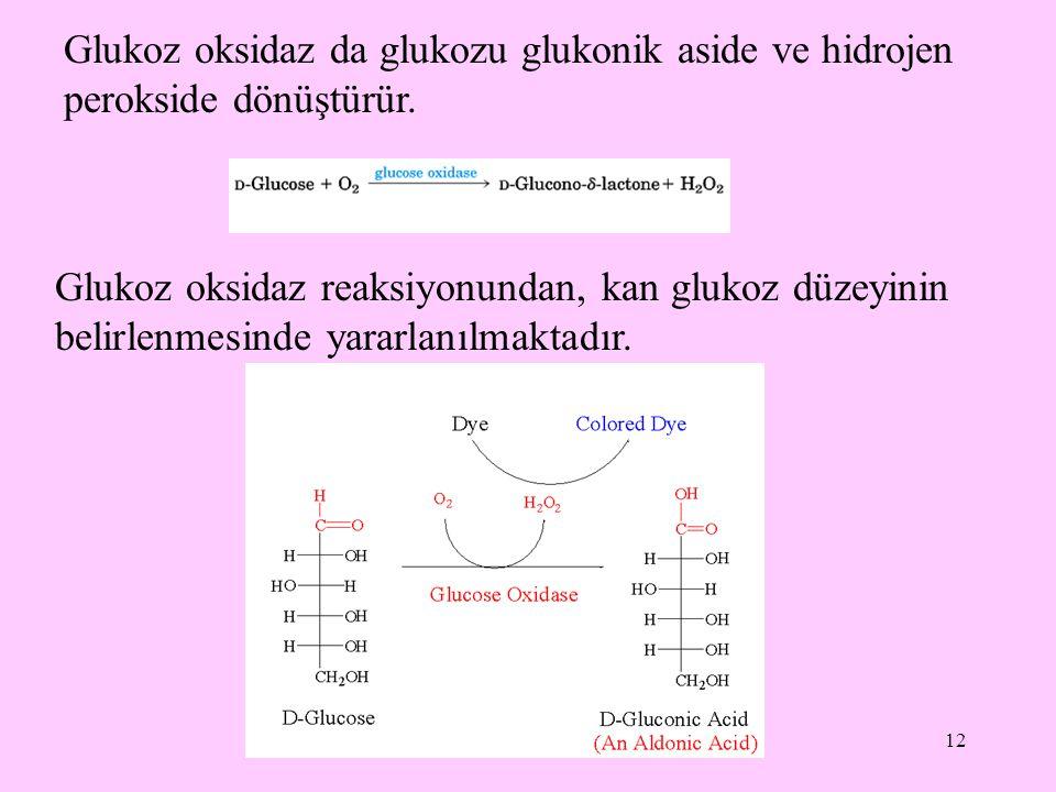 12 Glukoz oksidaz da glukozu glukonik aside ve hidrojen perokside dönüştürür. Glukoz oksidaz reaksiyonundan, kan glukoz düzeyinin belirlenmesinde yara