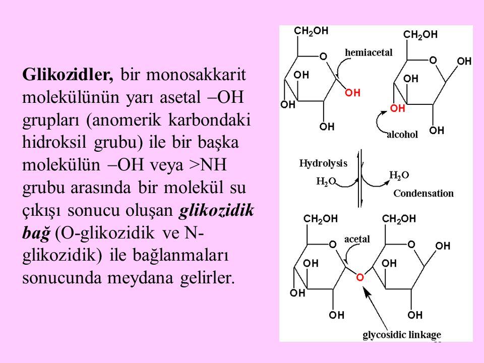 15 Glikozidler, bir monosakkarit molekülünün yarı asetal  OH grupları (anomerik karbondaki hidroksil grubu) ile bir başka molekülün  OH veya >NH gru