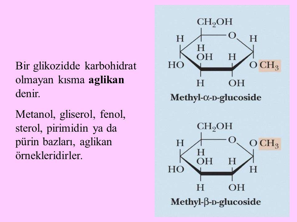 17 Bir glikozidde karbohidrat olmayan kısma aglikan denir. Metanol, gliserol, fenol, sterol, pirimidin ya da pürin bazları, aglikan örnekleridirler.