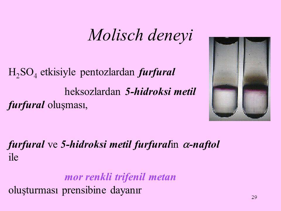 29 Molisch deneyi H 2 SO 4 etkisiyle pentozlardan furfural heksozlardan 5-hidroksi metil furfural oluşması, furfural ve 5-hidroksi metil furfuralin 