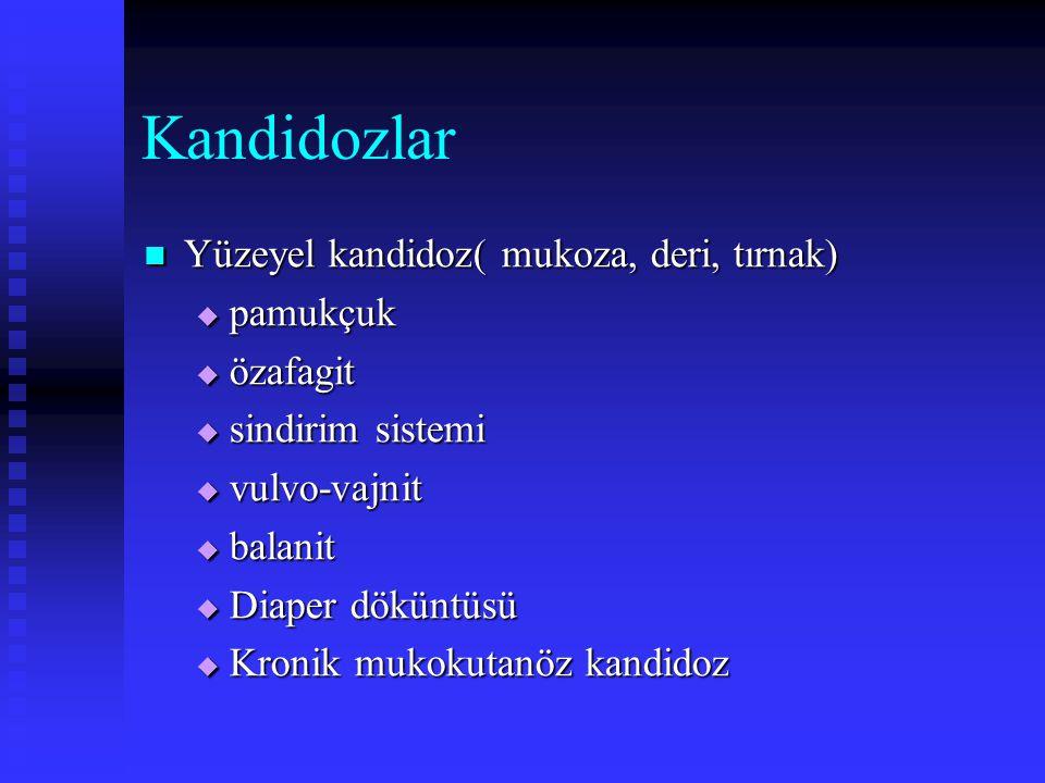 Kandidozlar Yüzeyel kandidoz( mukoza, deri, tırnak) Yüzeyel kandidoz( mukoza, deri, tırnak)  pamukçuk  özafagit  sindirim sistemi  vulvo-vajnit 