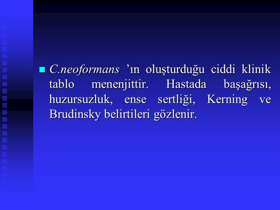 C.neoformans 'ın oluşturduğu ciddi klinik tablo menenjittir. Hastada başağrısı, huzursuzluk, ense sertliği, Kerning ve Brudinsky belirtileri gözlenir.
