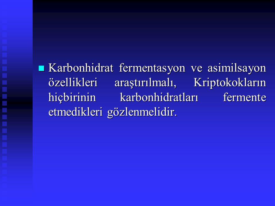 Karbonhidrat fermentasyon ve asimilsayon özellikleri araştırılmalı, Kriptokokların hiçbirinin karbonhidratları fermente etmedikleri gözlenmelidir. Kar