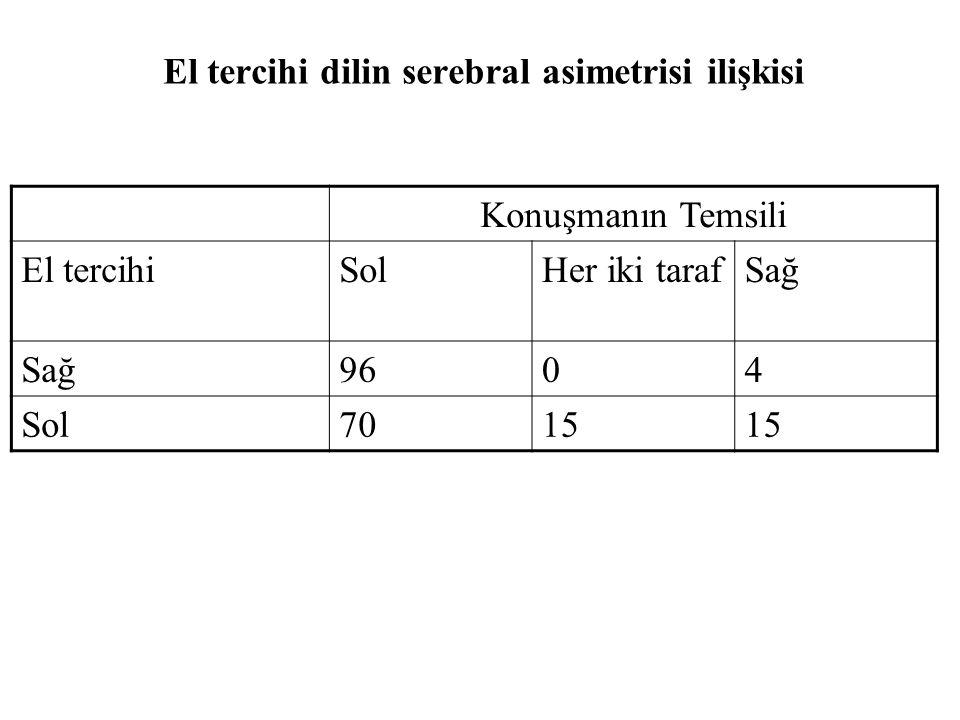 El tercihi dilin serebral asimetrisi ilişkisi Konuşmanın Temsili El tercihiSolHer iki tarafSağ 9604 Sol7015