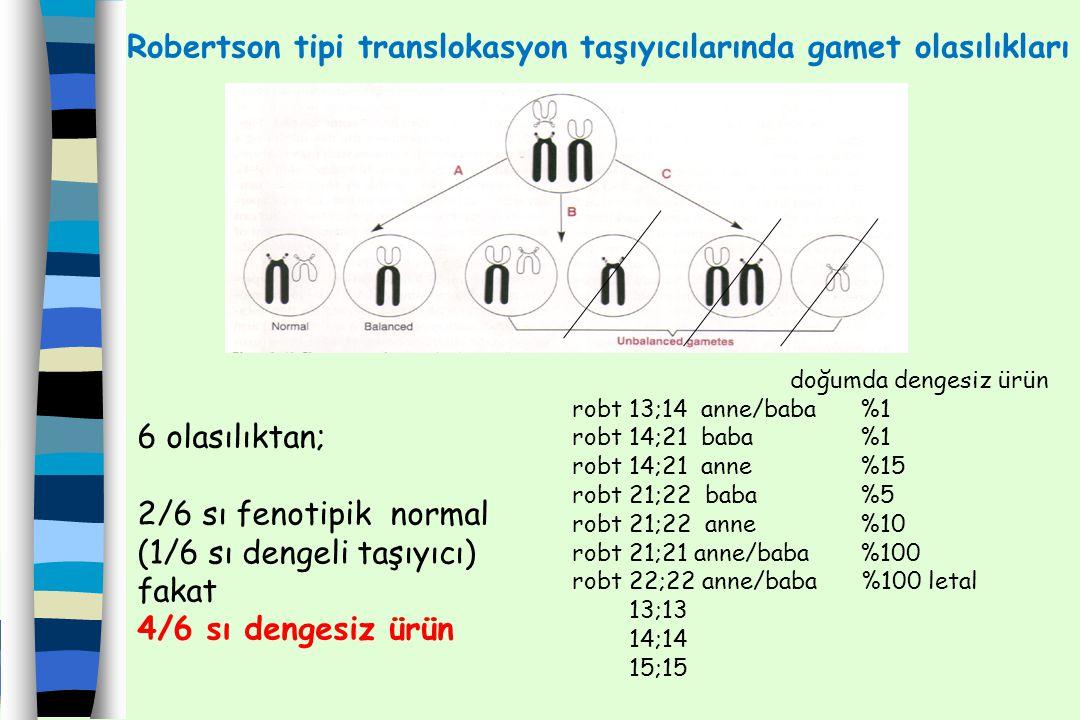 Robertson tipi translokasyon taşıyıcılarında gamet olasılıkları 6 olasılıktan; 2/6 sı fenotipik normal (1/6 sı dengeli taşıyıcı) fakat 4/6 sı dengesiz