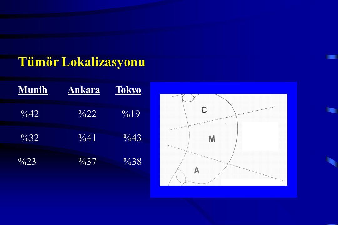 Tümör Derinliği %p T1970.0001 T265 T346 T413 Lenf Nodu % p N077 0.0001 N155 N219 N310 Evre % p I 78 0.0001 II 42 III 35 IV 0