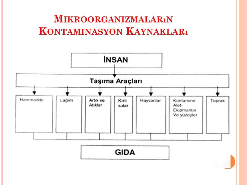 M IKROORGANIZMALARıN K ONTAMINASYON K AYNAKLARı