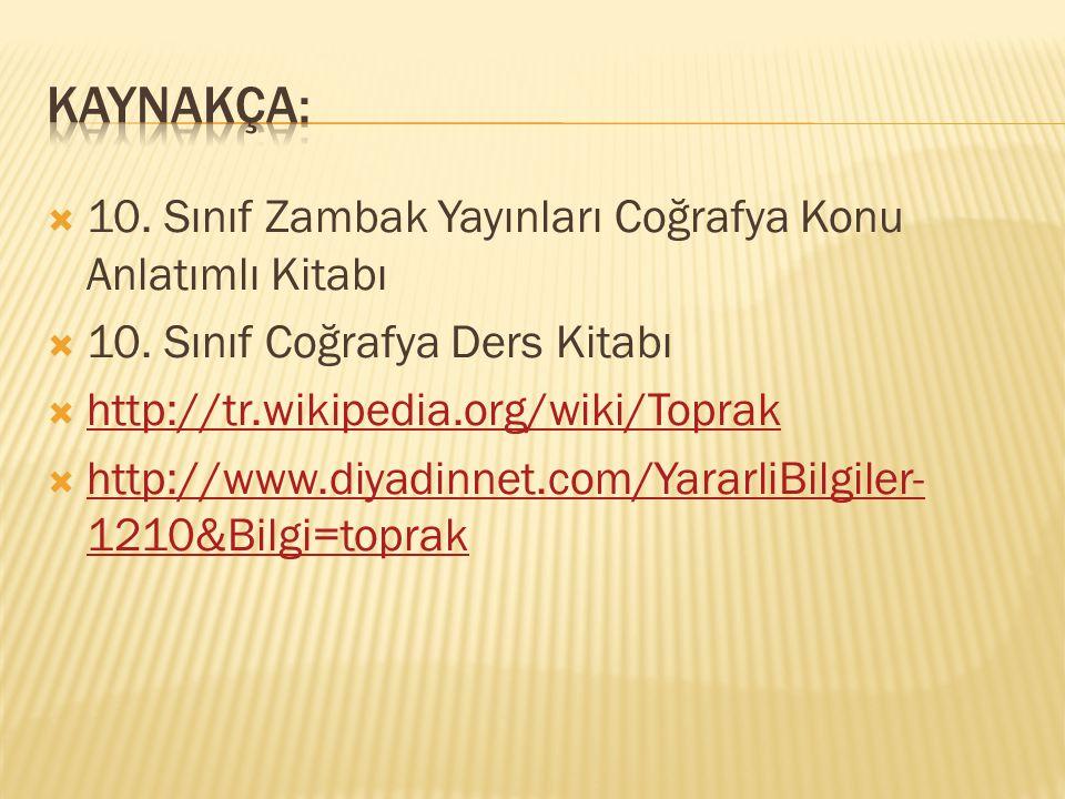  10.Sınıf Zambak Yayınları Coğrafya Konu Anlatımlı Kitabı  10.