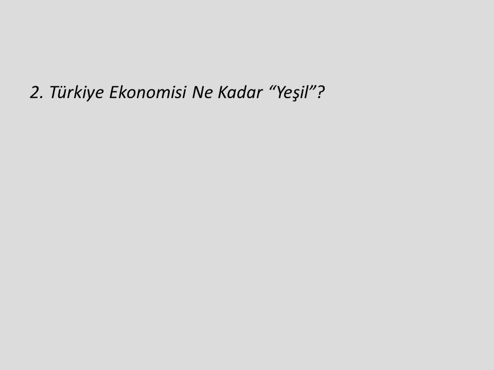 """2. Türkiye Ekonomisi Ne Kadar """"Yeşil""""?"""