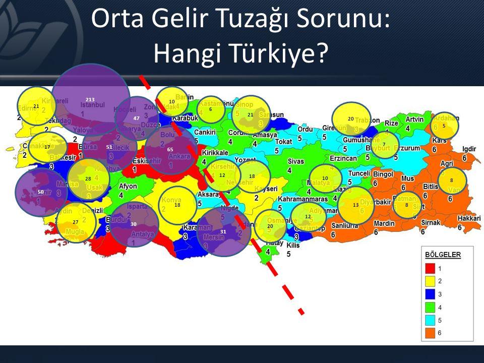 Orta Gelir Tuzağı Sorunu: Hangi Türkiye? 31 30 51 65 50 213 28 21 27 13 12 17 10 18 20 18 10 47 6 21 20 7 5 8 8 12