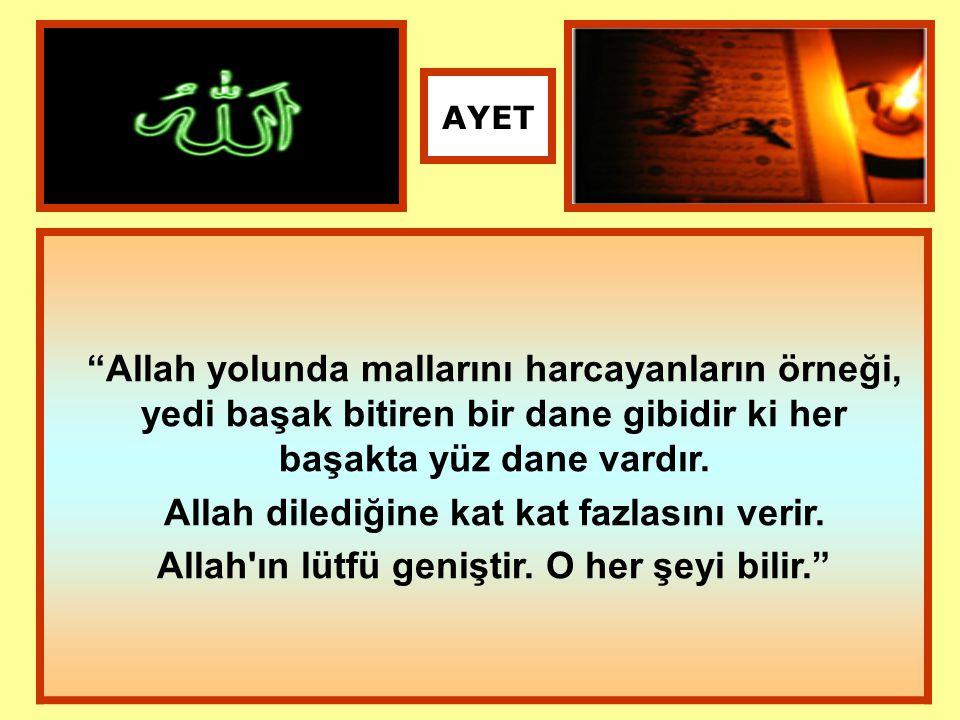 """""""Allah yolunda mallarını harcayanların örneği, yedi başak bitiren bir dane gibidir ki her başakta yüz dane vardır. Allah dilediğine kat kat fazlasını"""