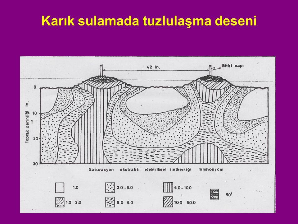 Yıkama Gereksinimi Yıkama gereksinimini belirleyebilmek için, sulama suyu tuzluluğu (EC w ) ve bitkinin tuza dayanım tuzlulukları (EC e ) bilinmelidir.