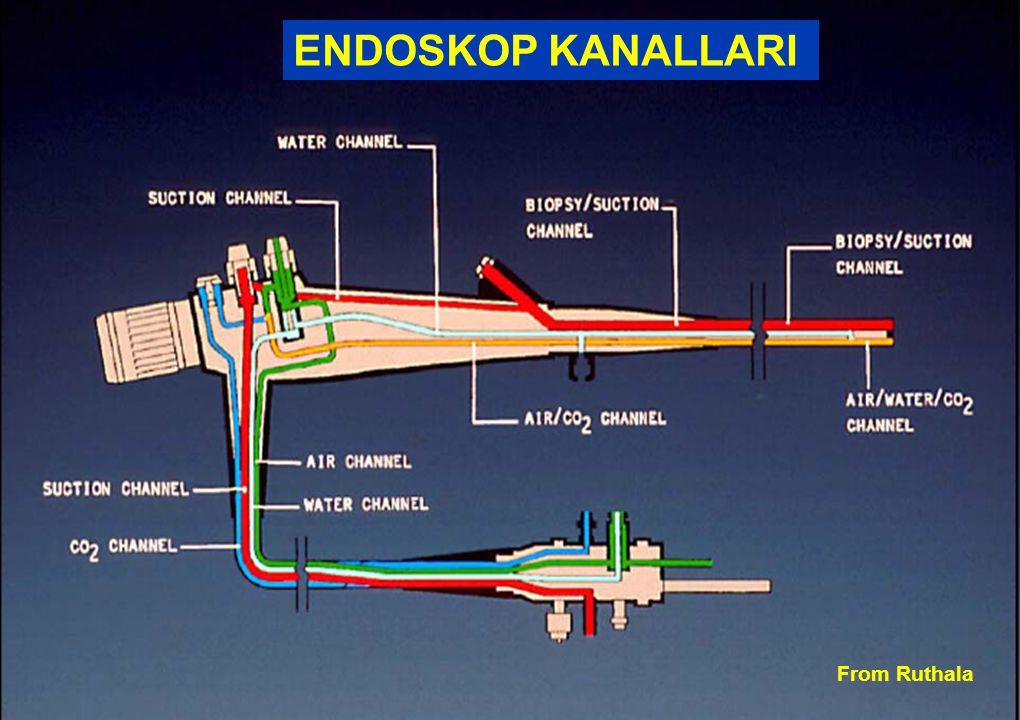 Sağlık Bakanlığı Enfeksiyon Kontrol Hemşireliği Eğitimi From Ruthala ENDOSKOP KANALLARI