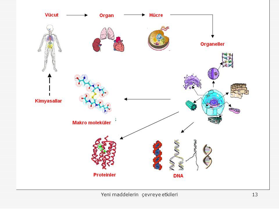 Yeni maddelerin çevreye etkileri13