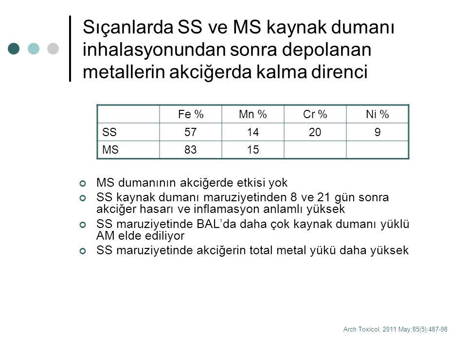 Sıçanlarda SS ve MS kaynak dumanı inhalasyonundan sonra depolanan metallerin akciğerda kalma direnci MS dumanının akciğerde etkisi yok SS kaynak duman