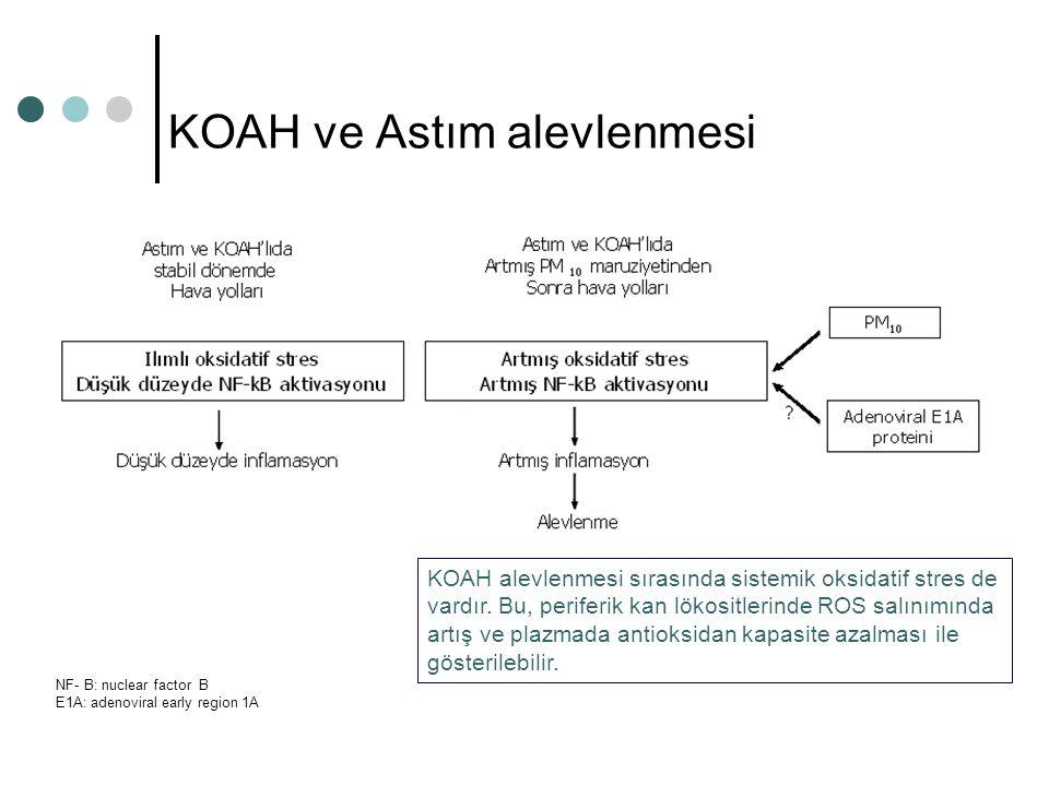 KOAH ve Astım alevlenmesi NF- B: nuclear factor B E1A: adenoviral early region 1A KOAH alevlenmesi sırasında sistemik oksidatif stres de vardır. Bu, p