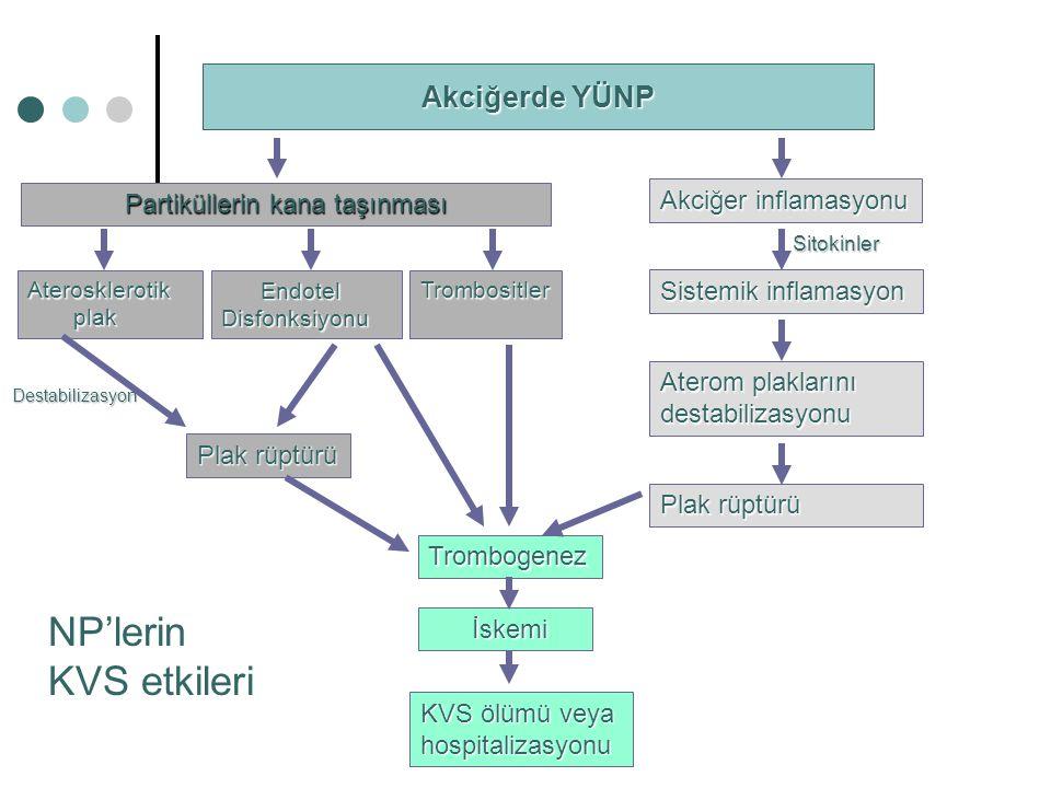 Akciğerde YÜNP Partiküllerin kana taşınması Akciğer inflamasyonu Aterosklerotik plak plak Endotel EndotelDisfonksiyonu Trombositler Trombogenez İskemi