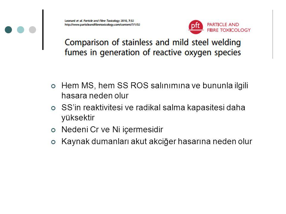 Hem MS, hem SS ROS salınımına ve bununla ilgili hasara neden olur SS'in reaktivitesi ve radikal salma kapasitesi daha yüksektir Nedeni Cr ve Ni içerme
